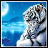 Алмазные картины с тигром