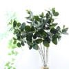 Искусстыенные растения - фикус.