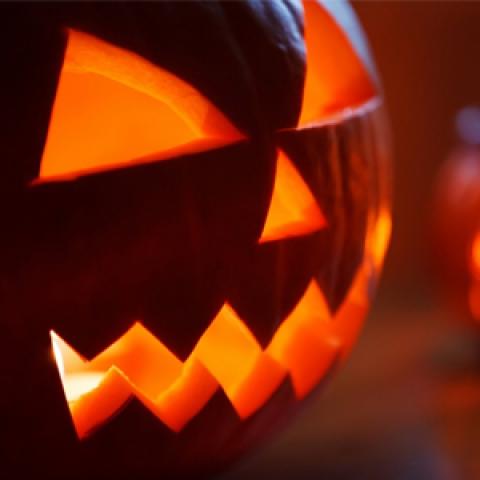 Купить товары оптом для Хэллоуина можно в одном месте